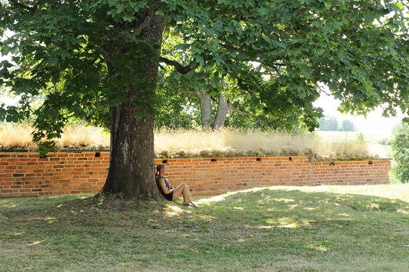 Nuori nainen istuu ison lehtipuun alla